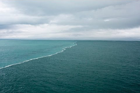 gulf of alaska where two oceans meet underwater camera